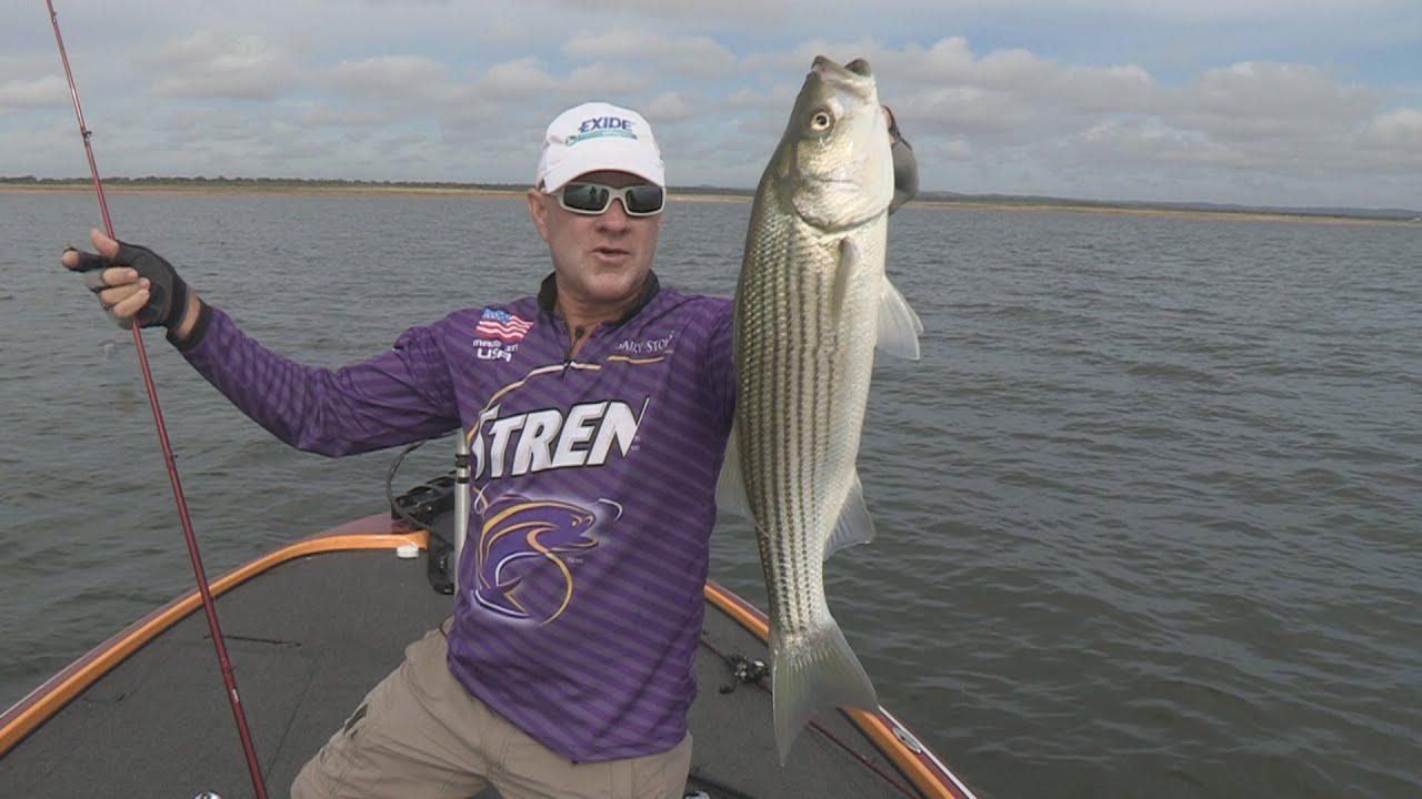 Southwest outdoors report 29 lake buchanan texas striper for Lake gaston fishing report