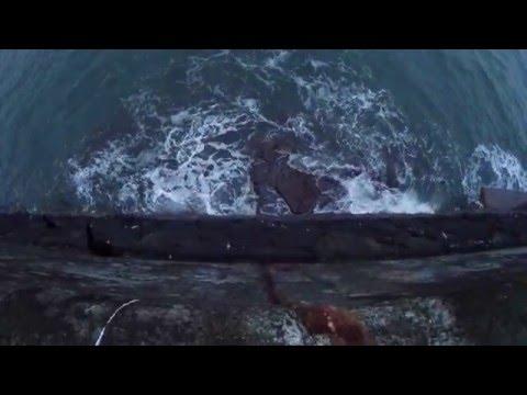 Dunbar Harbour GoPro Hero4 Gimbal