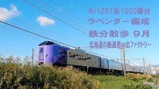 【鉄分散歩】ラベンダー編成 キハ261系5000番台