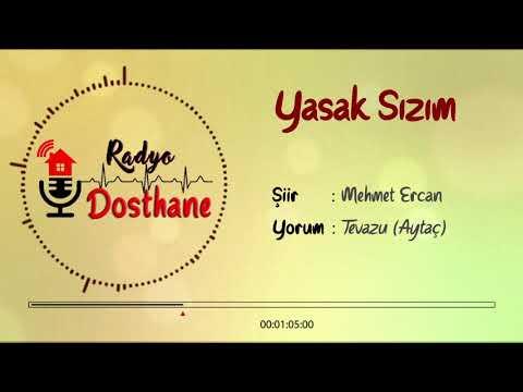 Tevazu-Yasak Sızım (Mehmet Ercan)