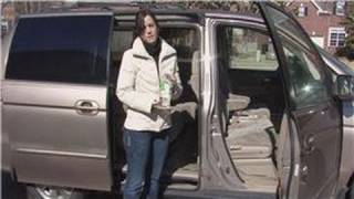 House Cleaning & Stain Removal : How to Clean Mold Out of Car Upholstery