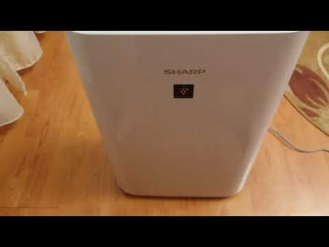 Sharp air purifier UA-HD40E-L review