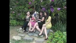 thai-lan-Ko-Tarutao-400x255 Cam Nang Du Lich Singapore