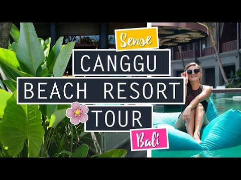 Sense Canggu Beach Resort Tour // Surfing Echo Beach // INDONESIA