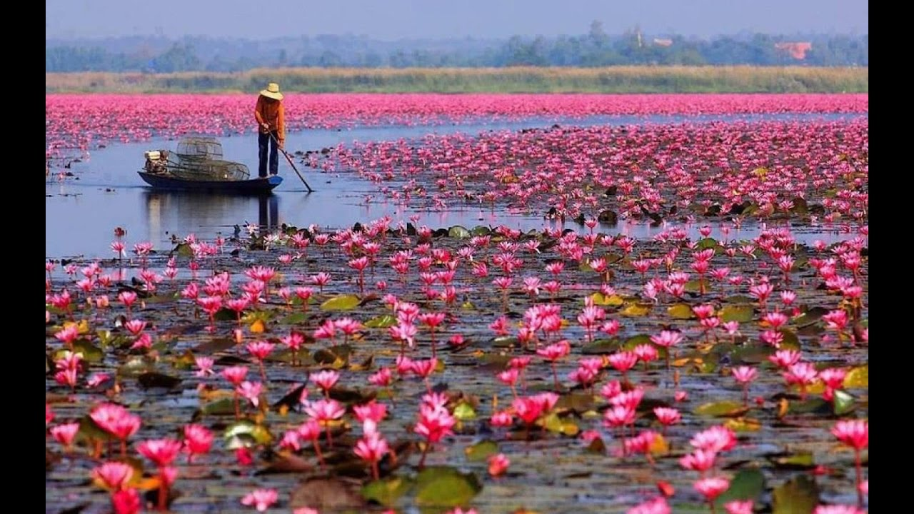фото вьетнам красивые