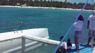 crazy catamaran net