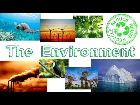 The Environment . Learn English