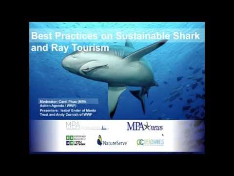 Best Practices on Sustainable Shark and Ray Tourism