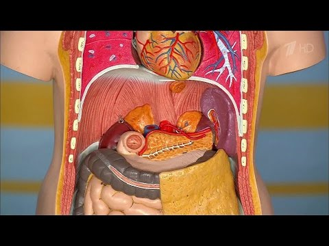 Болит ли поясница при раке кишечника
