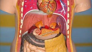 видео Сильные боли в поджелудочной железе. Каковы причины, симптомы и лечение?