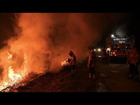 Climate Change Has Doubled Area Hit By Forest Fires in US (Part 2/2)