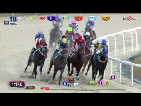 Road Winner - Seoul Racecourse - Sunday October 14, 2018