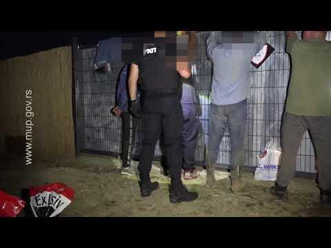 Pripadnici UKP i PU KG uhapsili ogovorno lice prihvatilišta za pse zbog zlostavljanja životinja
