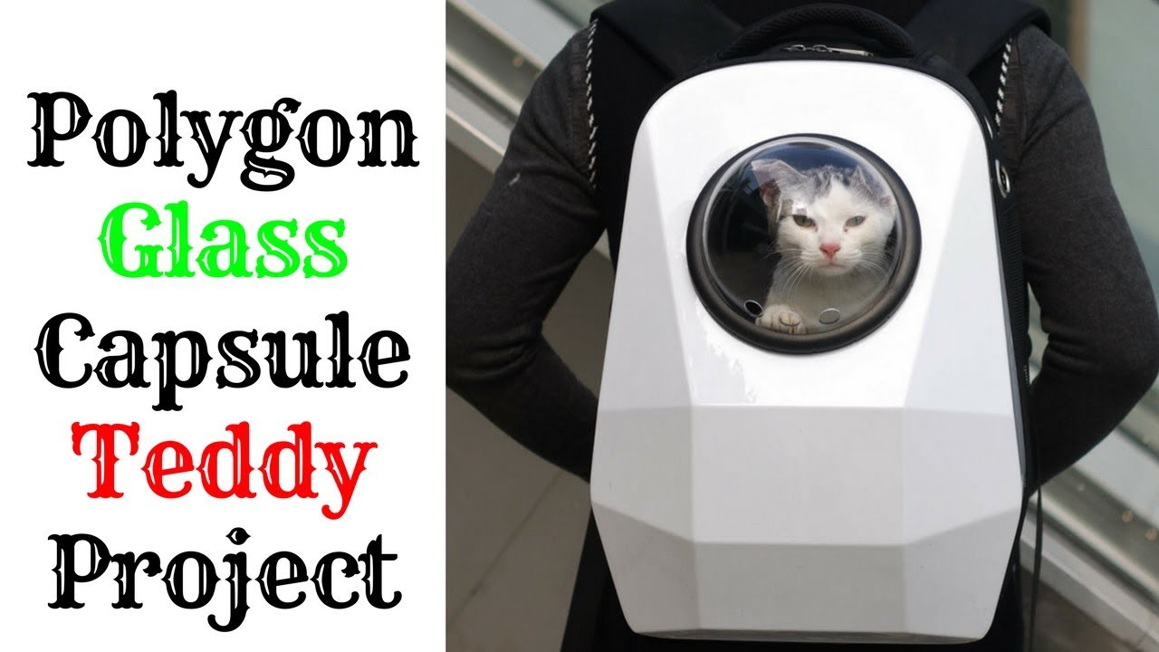 CAT SPACE BAG || SPACE CATS - U-PET SPACESHIP CARRIER 2019