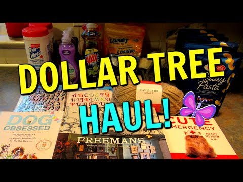 DOLLAR TREE HAUL!  Stickers and Books!  September 20, 2019 | LeighsHome