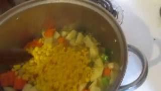 Home made Turkey  Stew