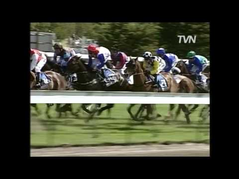 1997 Melbourne Cup - Might and Power