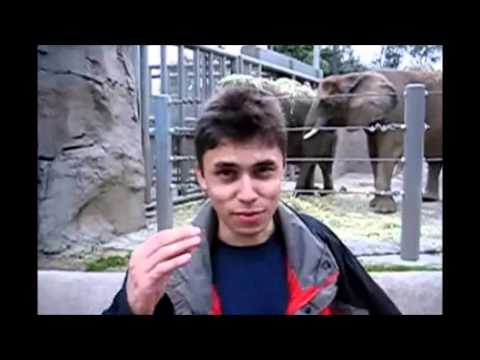 First YouTube Video -- Me at the zoo By Jawed Karim - YouTube Co-Founder.