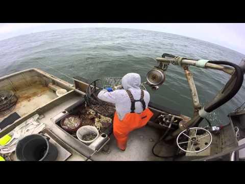 One manning commercial crab boat. F/V pacific stalker