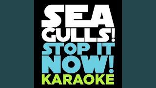 Seagulls! (Stop It Now) (Karaoke Version)