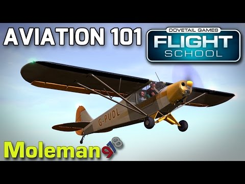 Aviation 101! | DTG Flight School #1 | Piper PA-18 / Piper PA-28