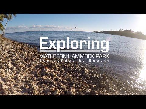 Exploring Matheson Hammock Park