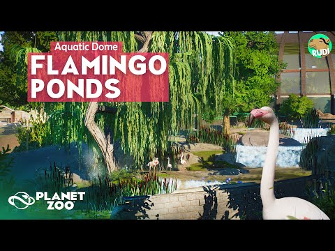 The Flamingo Ponds AQUATIC DOME Planet Zoo Aquatic Pack Speedbuild |