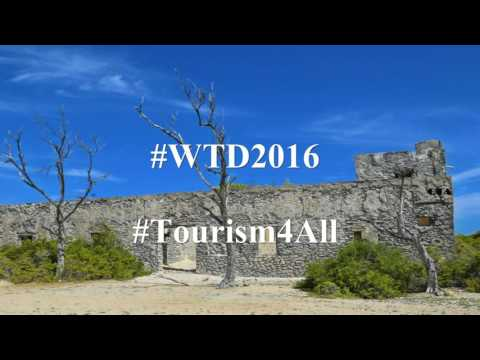 WTD Somalia - CEO's message 2016