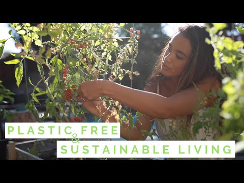Transitioning into plastic free and sustainable living 🌱