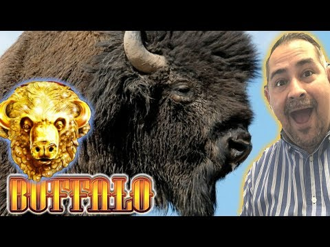 ★ BUFFALO GOLD LIVE ★ Max Bet Slot Play | Join Our Community!