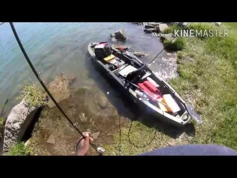 Fishing Lost Files