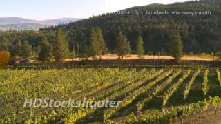 Stock footage Nov 2011