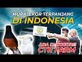 Yuk Intip Murai Ekor Panjang Yang Pakai Jagoan Di Ctr Bird Farm Bogor Jawa Barat  Mp3 - Mp4 Download