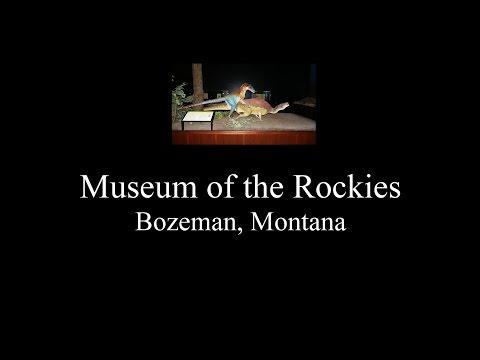 Museum of the Rockies movie