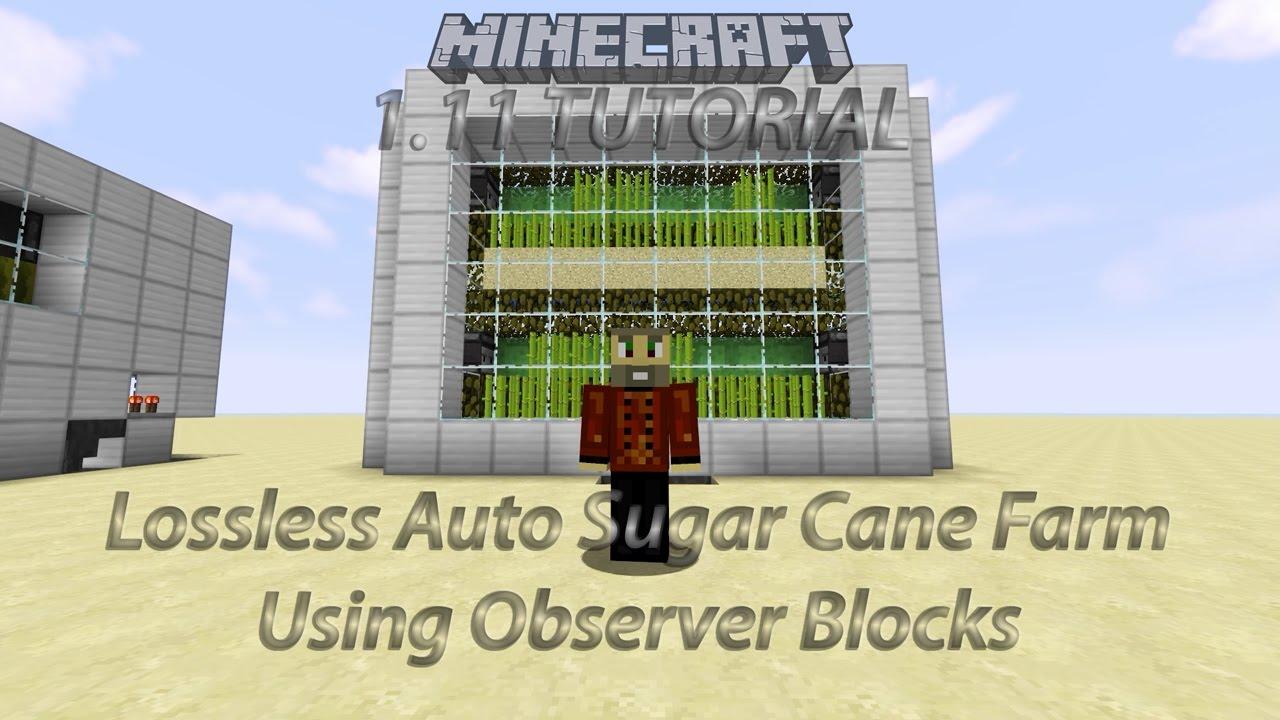 Auto Sugar Cane Farm Using Observer Blocks Youtube