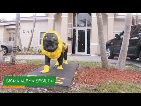 Trending Houses : SΑΕ - University of Miami