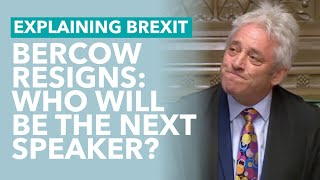 Bercow Resigns as Speaker; Who Will Replace Him? - TLDR Explains