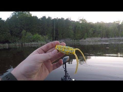 EP:2 Spro Bronzeye Popper Review