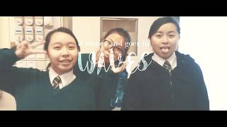 Publication Date: 2018-02-16 | Video Title: // TWGSS 2015 - 2018 The Class