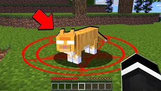There's something wrong with this Minecraft Cat... (PRANK)