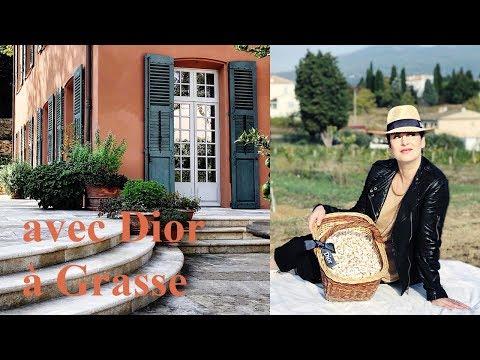 Chez Dior à Grasse, dans les champs de jasmin
