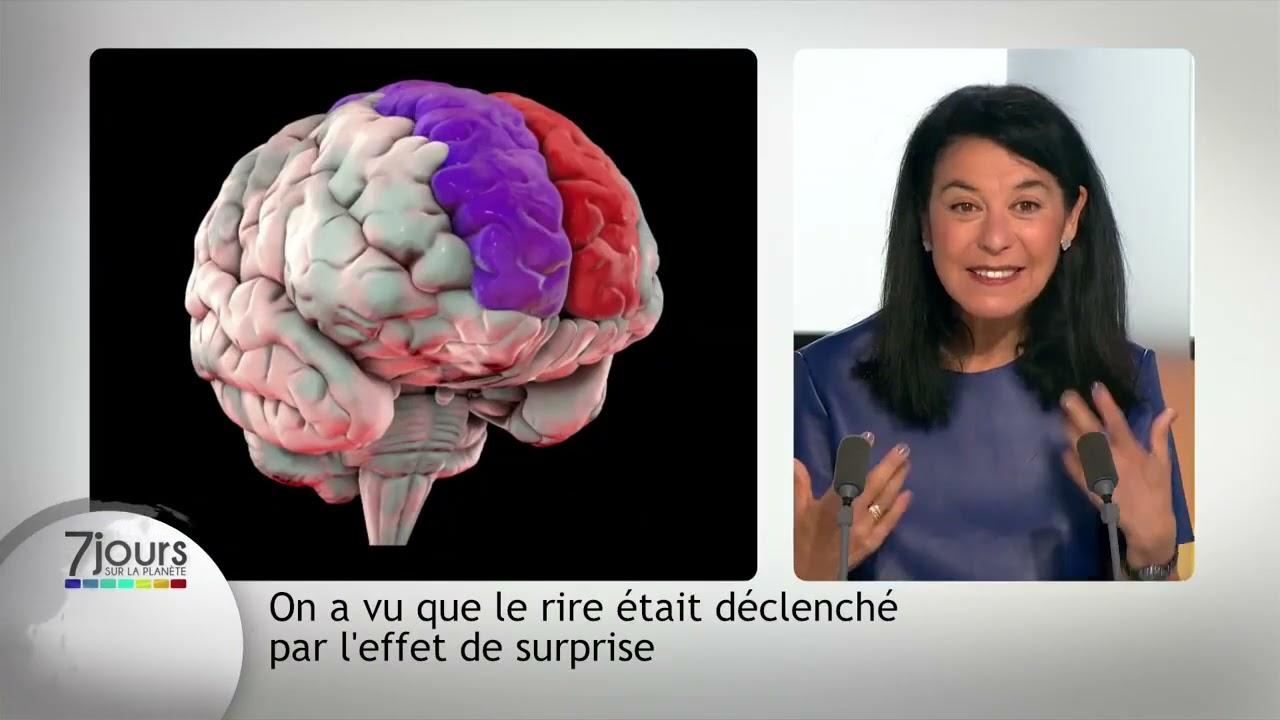 Le rire, le cerveau et l'apprentissage