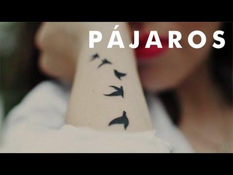 Pequeños tatuajes de varios pájaros volando