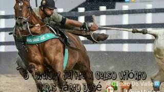 Os 5 Melhores Cavalos De Puxar Do Ranking CPV VAQUEJADA