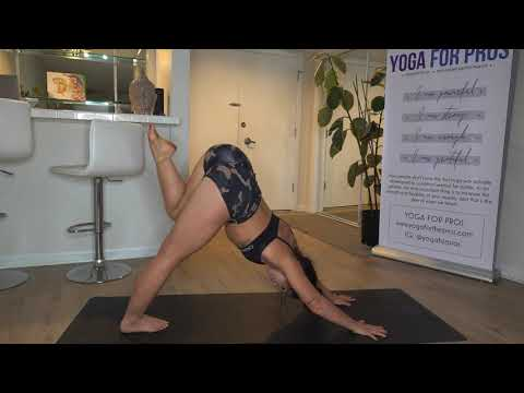 day-4:-slow-burn-vinyasa-flow-|-30-day-yoga-challenge