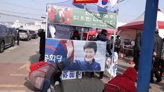 그 유명한 강화 인삼센터 앞 서명대