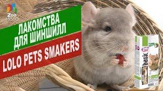 Лакомства для шиншилл LoLo Pets Smakers | Обзор лакомства для шиншилл LoLo Pets Smakers