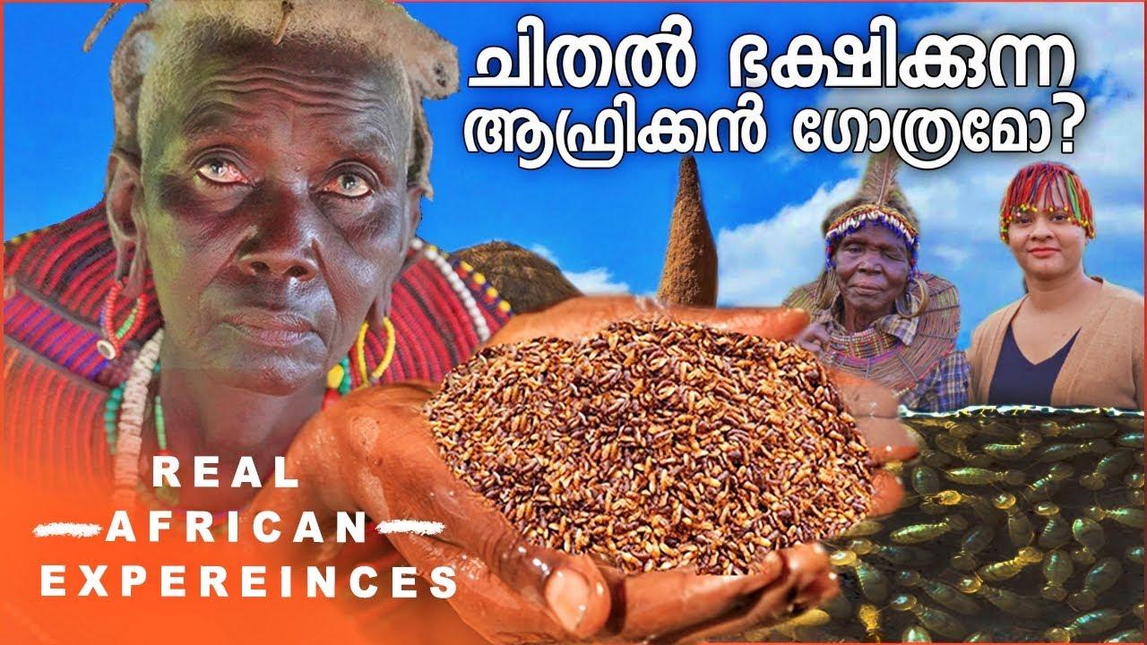 SHOCKING TRIBAL FOOD Pokot Village Visit | Africa Malayalam Travel Vlog |