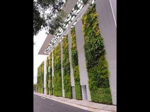 como hacer un jardin vertical casero