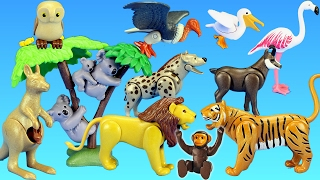 Playmobil Wild Animals Toy Collection For Kids - Animals For Children